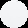001 (4025756) Electric White GP